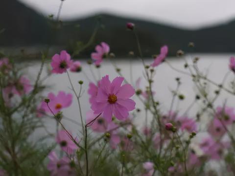 中国10处最原生态古村落
