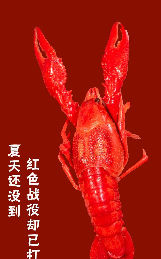 「襄味虾皇」来南阳啦~C位出道,横扫小龙虾排行榜,嗨吃15天