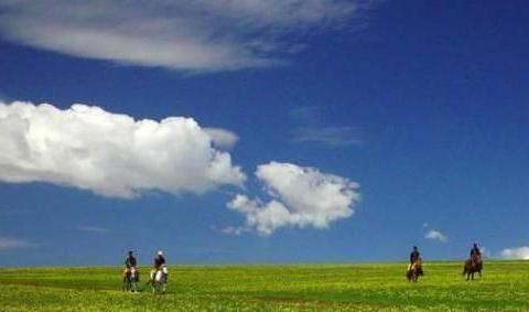 去草原就去蔚县空中草原的7大理由,终于明白为什么都去这里了!
