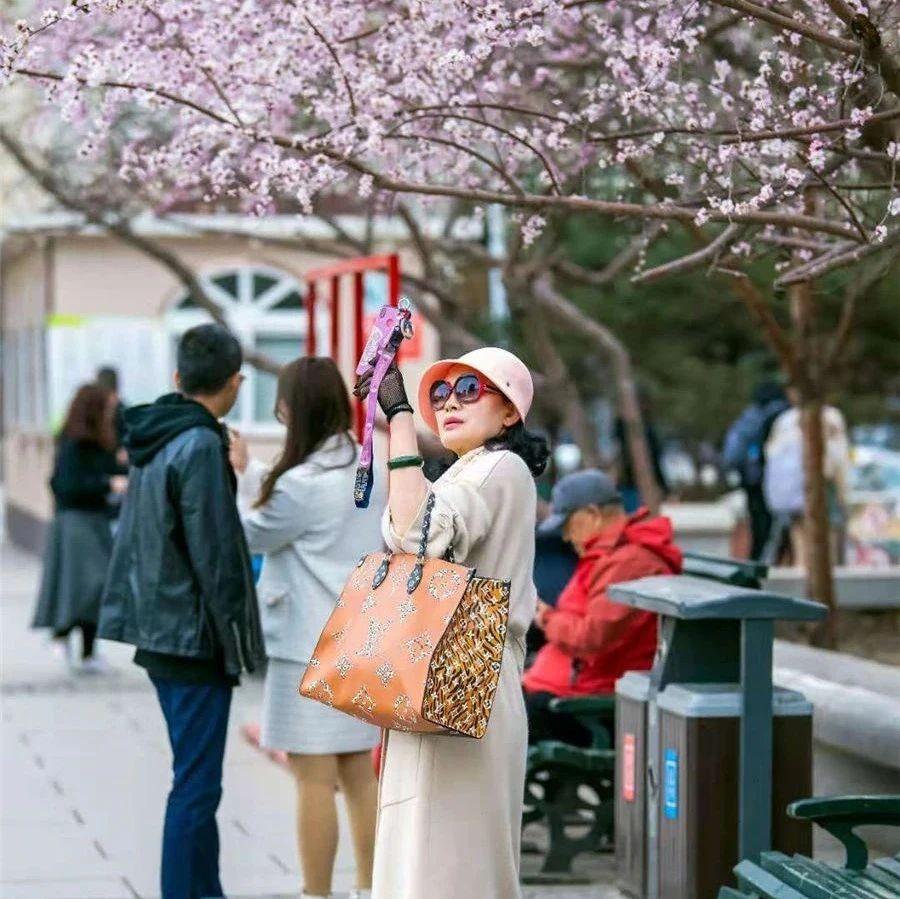 哈尔滨游客规模指数同比增134%|过夜率全国TOP10城市排第六