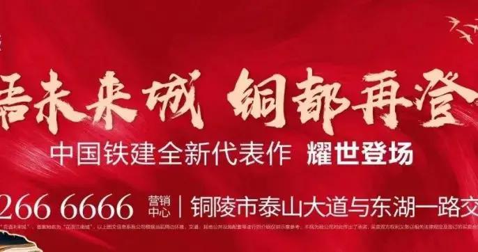 安徽省协调联络组向铜陵市交办中央生态环境保护督察第九批信访件