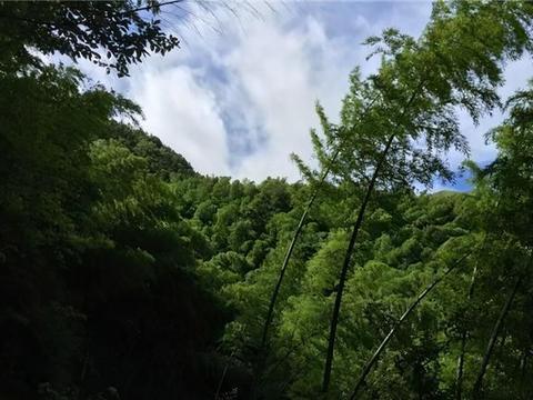 """21岁小伙带31岁寡妇私奔到深山,为爱妻筑""""天梯"""",隐居数十年"""