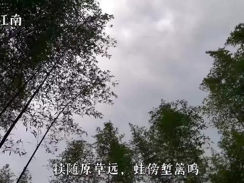 诗影江南系列:谷雨的诗句