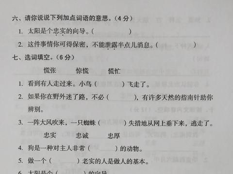 部编版二年级语文下册第六单元测试卷,想考高分,基础知识要牢固