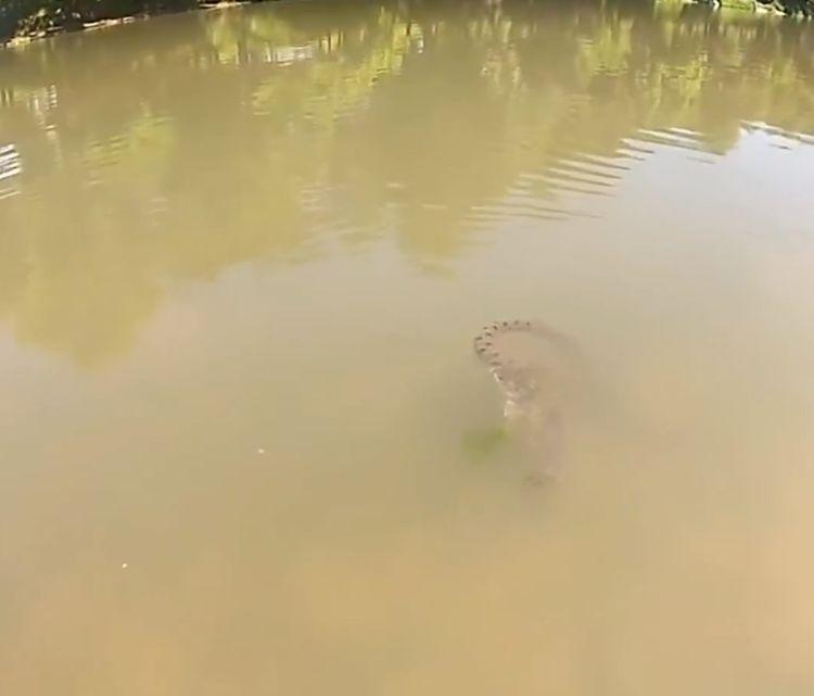 女子到河边洗衣服,看到水中有异样,走近看清原因掉头就跑
