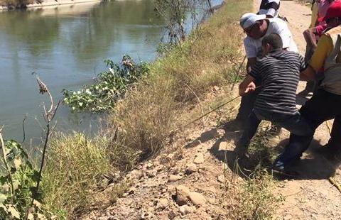 男子路过河边发现前方人潮涌动,好奇查看被这幕吓坏了