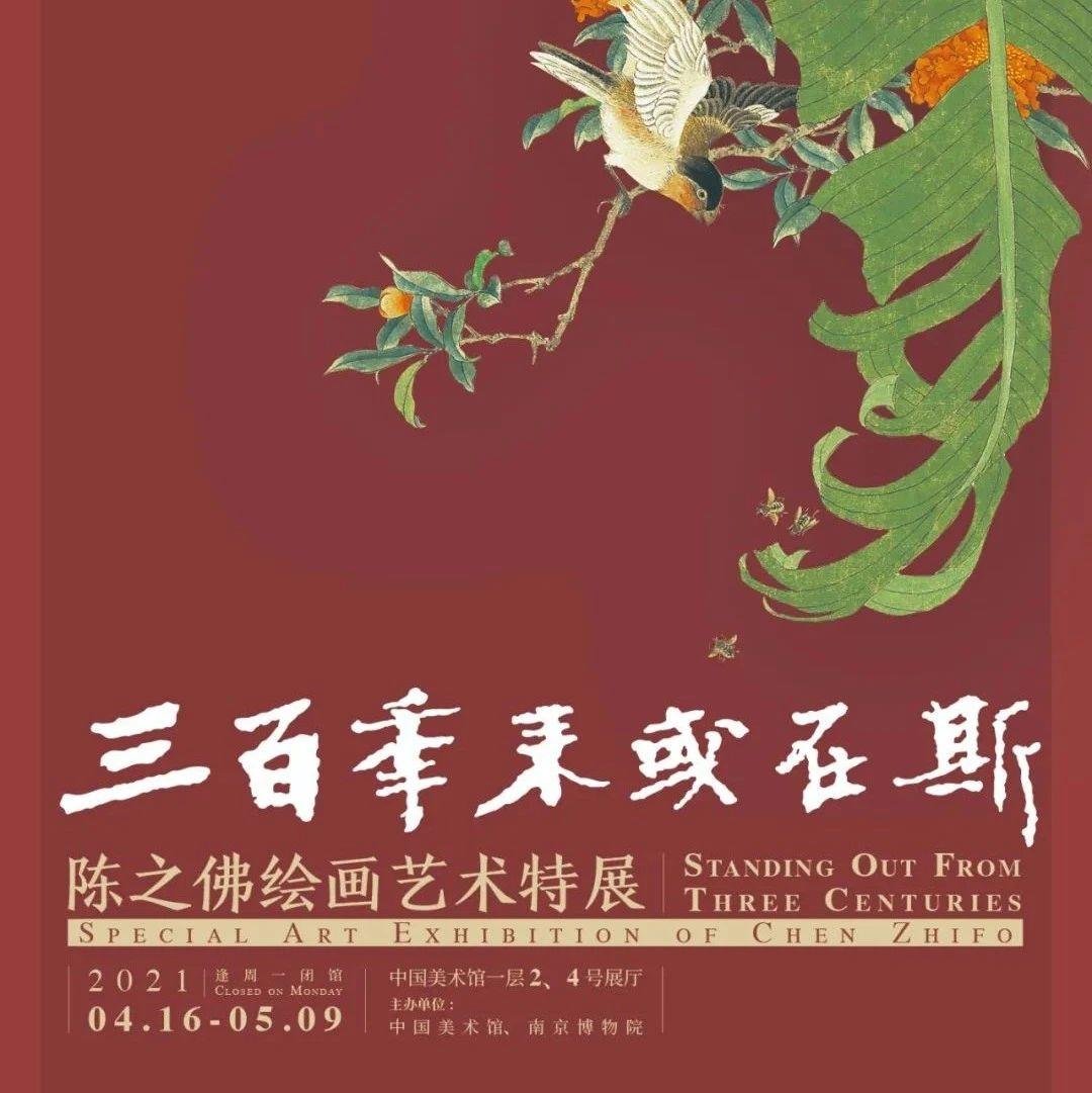 梦幻联动:中国美术馆x南京博物馆,陈之佛绘画艺术特展开幕了