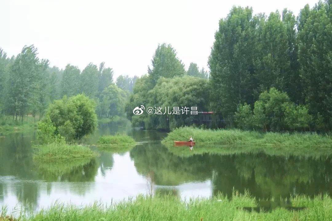 """长葛这儿要建沿河塑胶跑道、自行车赛道!种14公里""""金丝垂柳"""""""