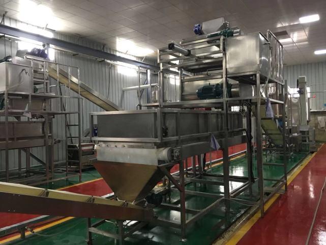 陈辉球大型干浆米线生产线怎么样,值得购买吗?