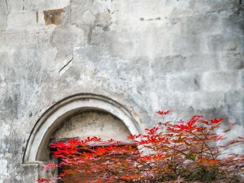 """江南此古镇总被游客忽略,风景如世外桃源,有""""浙东丽江""""的美誉"""