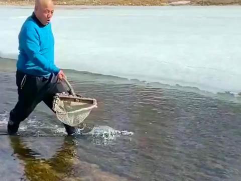 结冰的河面化开了,大哥用渔网在里面捕鱼,一天能收获几十条!