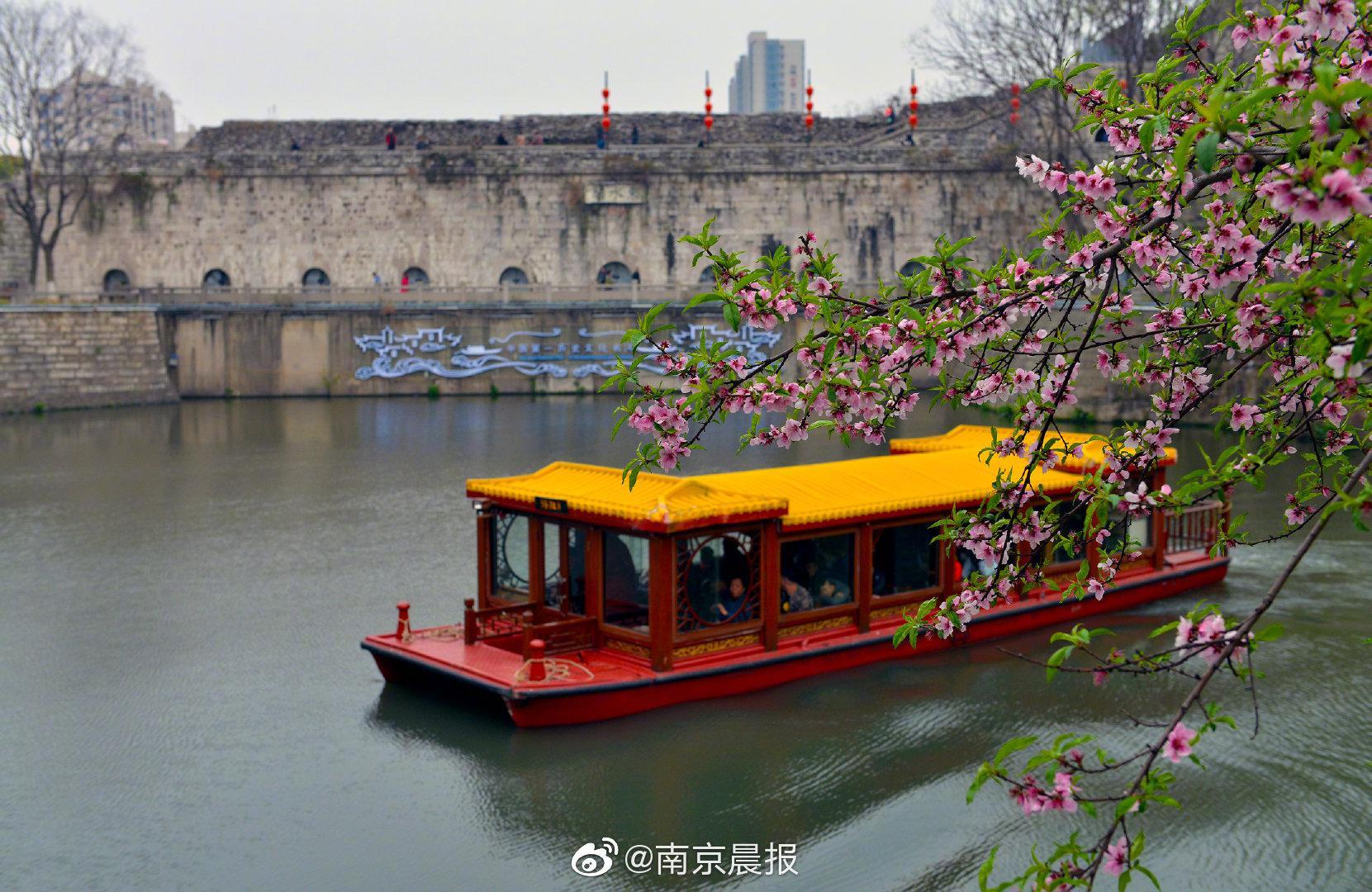 现场直播、行走城墙、儿童画展……南京城墙国际古迹遗址日活动精彩纷呈