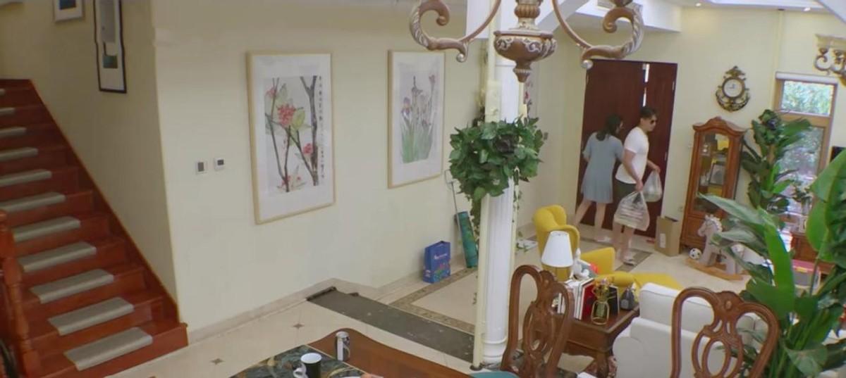 凌潇肃和唐一菲的家,室内全是各种绿色