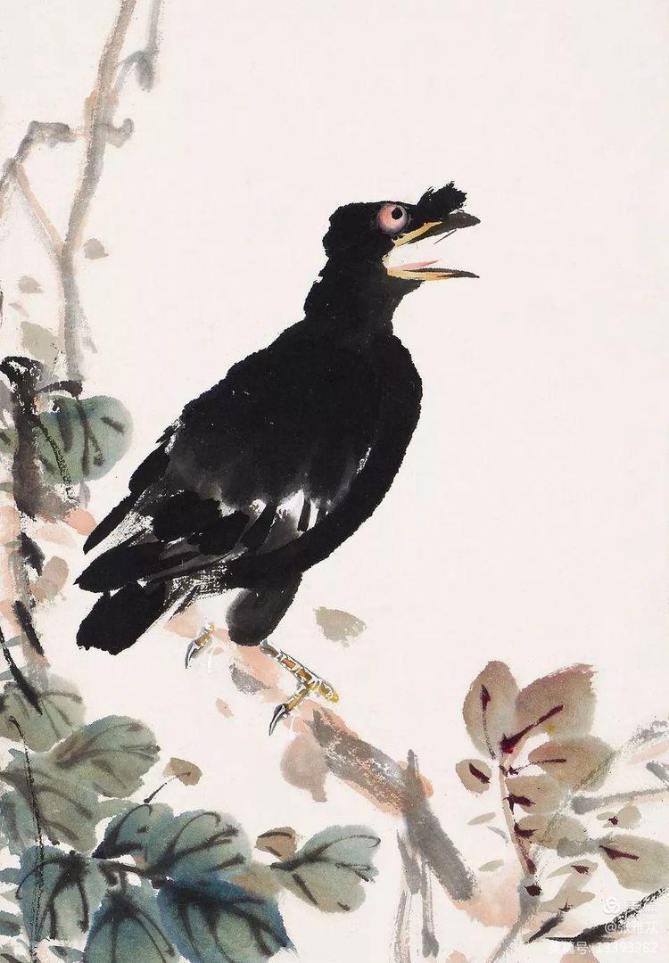 萧朗(1917—2010),他的禽鸟,惟妙惟肖……