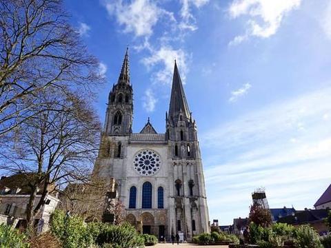 《巴黎圣母院》里的真善美和虚伪