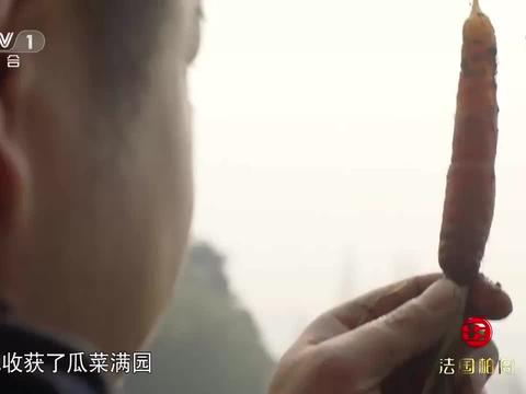 舌尖上的中国:云南出产的大米的生长周长,甚至远超东北大米