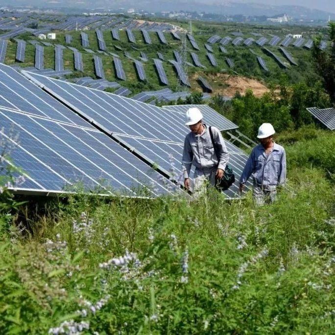 开局首季报·问道⑤丨一季度绿色低碳转型成效显现