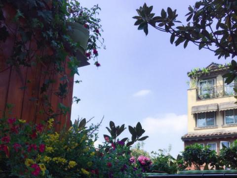好的露台,一定是用来建造空中花园的,开窗闻花香