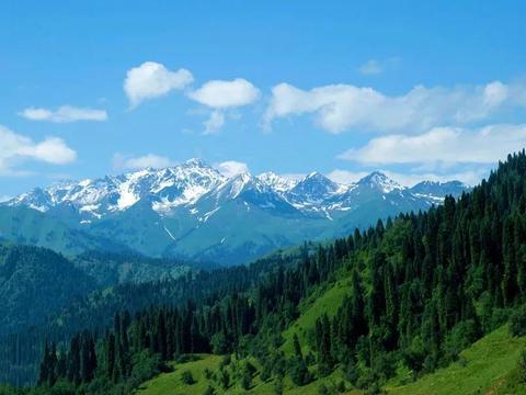 五一小众旅游好去处——天山森林氧吧,库尔德宁