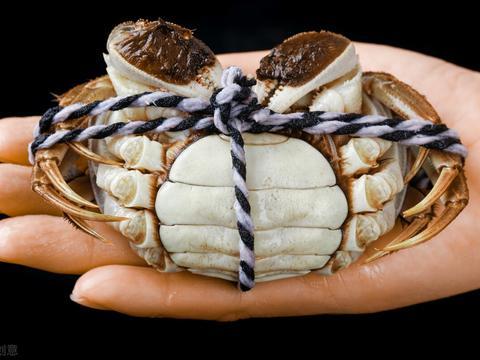 蒸螃蟹,还在直接上锅蒸?记住这3点,鲜味不流失,蟹黄不外流