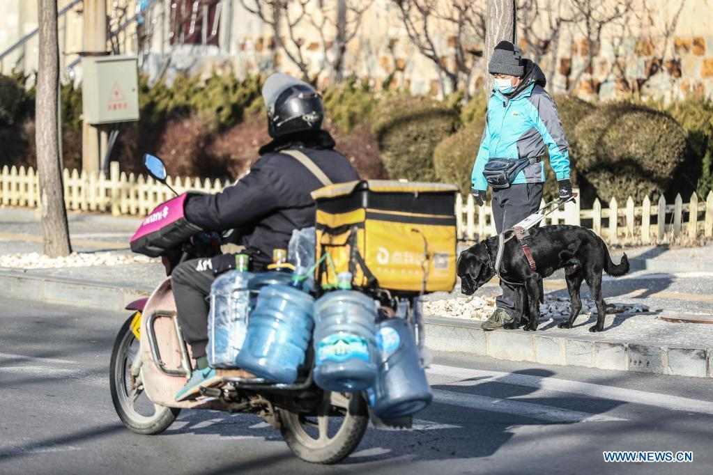Trainer Xu Kun trains a guide dog on a street in Dalian, northeast China's Liaoning Province, Jan. 14, 2020. The Dalian branch of the China Guide Dog Training Center, which was founded in May 2006, is a non-profit training institution of guide dogs in China. It has provided 239 free guide dogs to visually impaired people around the country. Guide dogs in the center are strictly selected from Labrador and Golden retrievers. Usually 45 days after birth, those puppies are sent to live with volunteer families, getting familiar with human life and learning simple orders. When the puppies grow up to about one year old, they are sent back to the center for professional training for one to one and a half year. Customized courses which are specially set according to the life scenes of visually impaired people, include going up and down stairs, avoiding obstacles and crossing streets. They also take a series of
