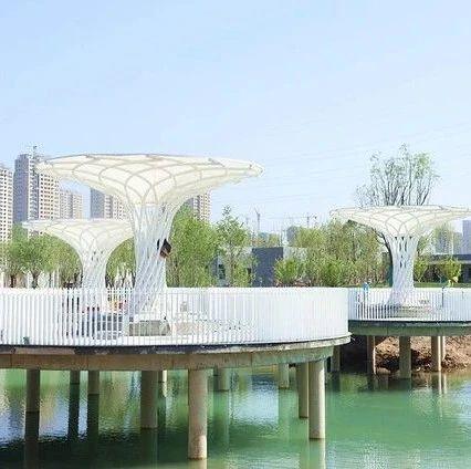 5月1日,周口芙蓉湖公园正式开园!又一个游玩好去处