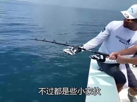 带一只5斤的火鸡,出海钓鱼,居然钓到800斤的巨型石斑鱼