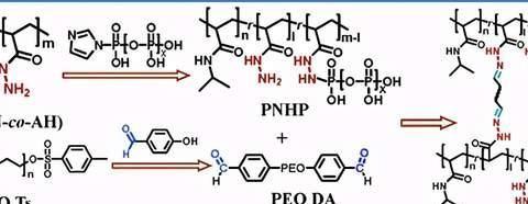 河北大学:生物相容/止血/自修复的多磷酸盐 PNIPAM-酰肼水凝胶