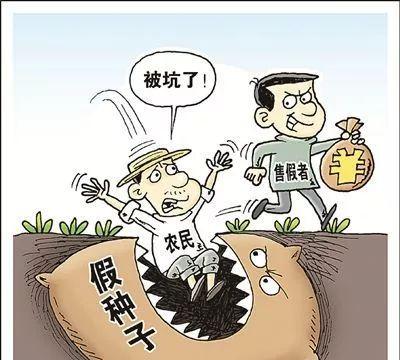 玉米种子,买5送1、买10送2!农民贪便宜,能会不上当?