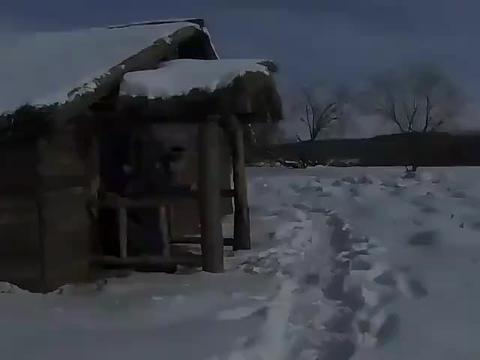 闯关东:雪地里有狍子脚印,朱开山突然发现不对劲,立马追上前去