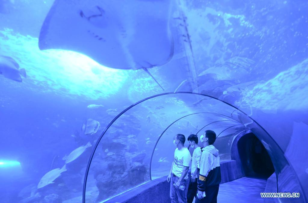 People visit the Zuohai Marine World in Fuzhou, capital of southeast China's Fujian Province, May 2, 2021. (Xinhua/Song Weiwei)