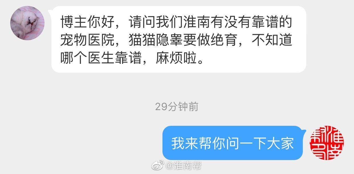 网友@久与沧波 投稿说:请问我们淮南有没有靠谱的宠物医院,猫猫隐睾要做绝育,不知道哪个医生靠谱……