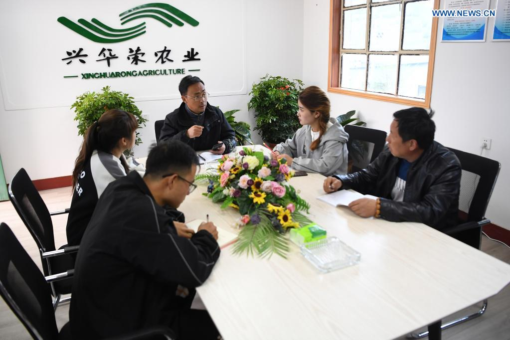 Zhang Shuhao hosts a meeting with other members of his team at Xinghuarong, an agriculture company in Mudan Township, Tianshui City of northwest China's Gansu Province, on April 27, 2021. Zhang Shuhao, 42, quit his well-paid job three years ago to start an agriculture company with a few partners sharing the same vision at a mountainous village in Mudan Township, Tianshui City. In three years, Xinghuarong, Zhang's company, contracted 6,200 mu (about 413 hectares) of idle arable lands, where terraced fields, greenhouses, and a reservoir have been built to grow diverse produces ranging from traditional Chinese medicine materials to juicy fruits. Apart from encouraging villagers to raise fowls, Zhang also offered job opportunities to more than 700 residents in five neighboring villages. Once commonly adopted extensive farming has been replaced by intensive and mechanized one. (Xinhua/Du Zheyu)