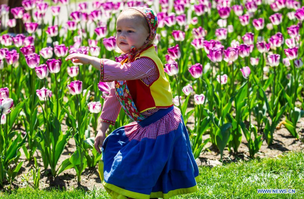 A child in traditional Dutch attire poses with tulips during the 2021 Tulip Time Festival in Holland, Michigan, the United States, on May 2, 2021. (Photo by Joel Lerner/Xinhua)