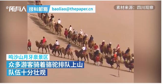 堵骆驼!敦煌景区骆驼排队上山,队伍壮观