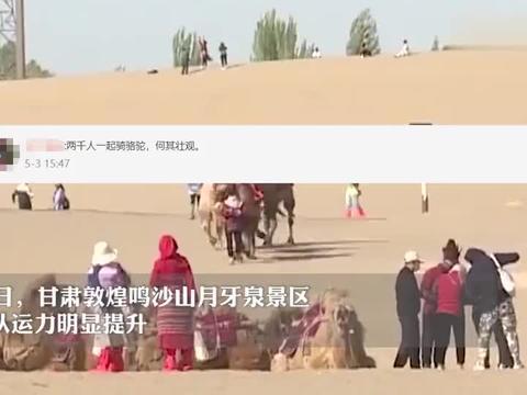 敦煌景区骆驼排队上山场面壮观,网友:别人堵车,这里堵骆驼