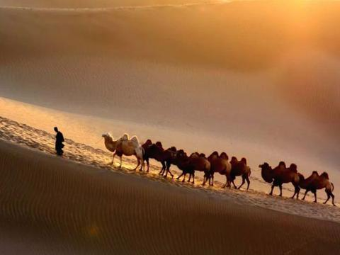 塔克拉玛干沙漠那么多地下水,为何迟迟不开采?有何难言之隐
