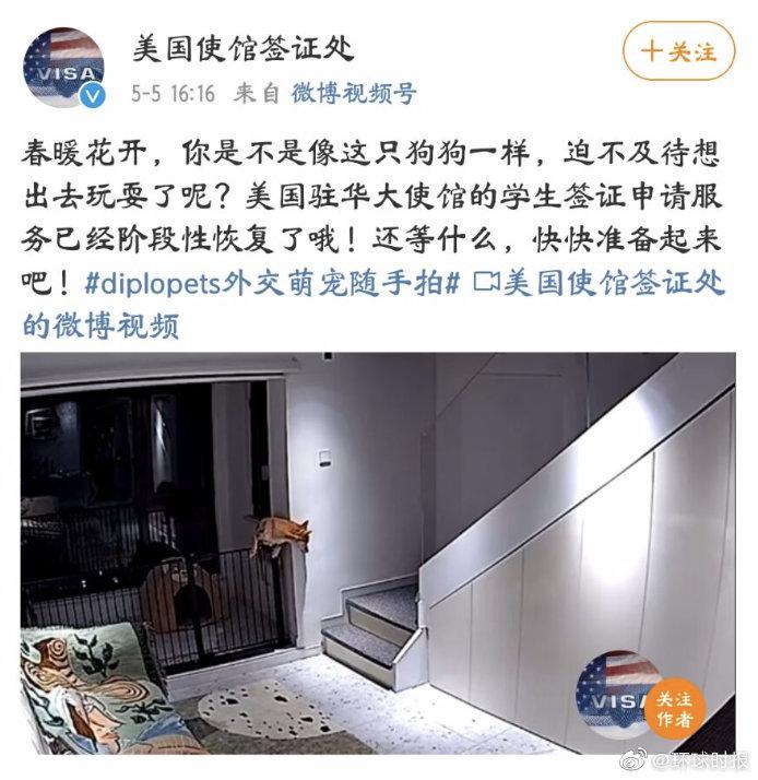 美使馆官方账号用一只狗比喻想办签证出国的中国人,被骂后删帖