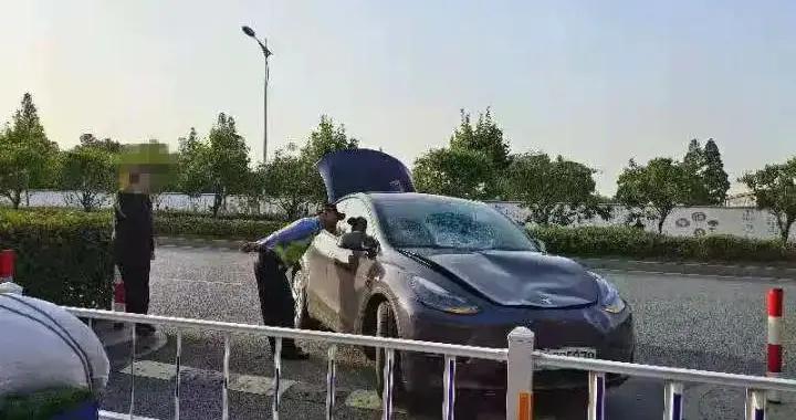 斑马线护栏撞坏,车头撞凹,挡风玻璃也碎了