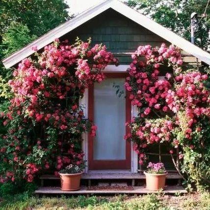 建一座小院儿,从此不理尘嚣,享受田园时光~