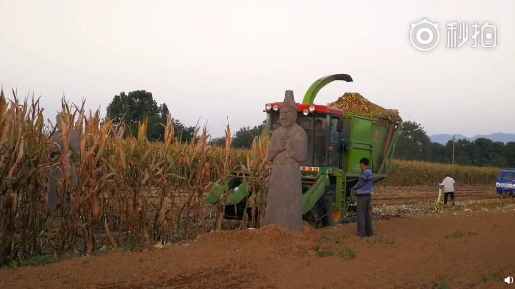 河南巩义宋陵上种田,河南考古院:正在进行环境整治