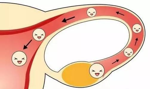 想怀孕?请先保护好你的输卵管!合肥喜得儿不孕不育医院
