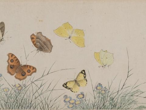 香港中文大学文物馆载誉归来,展览绘画珍品,绽放古代世界异彩