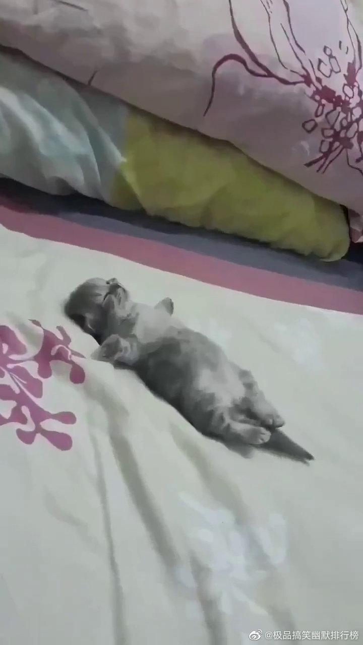小朋友睡觉是不是做梦了?