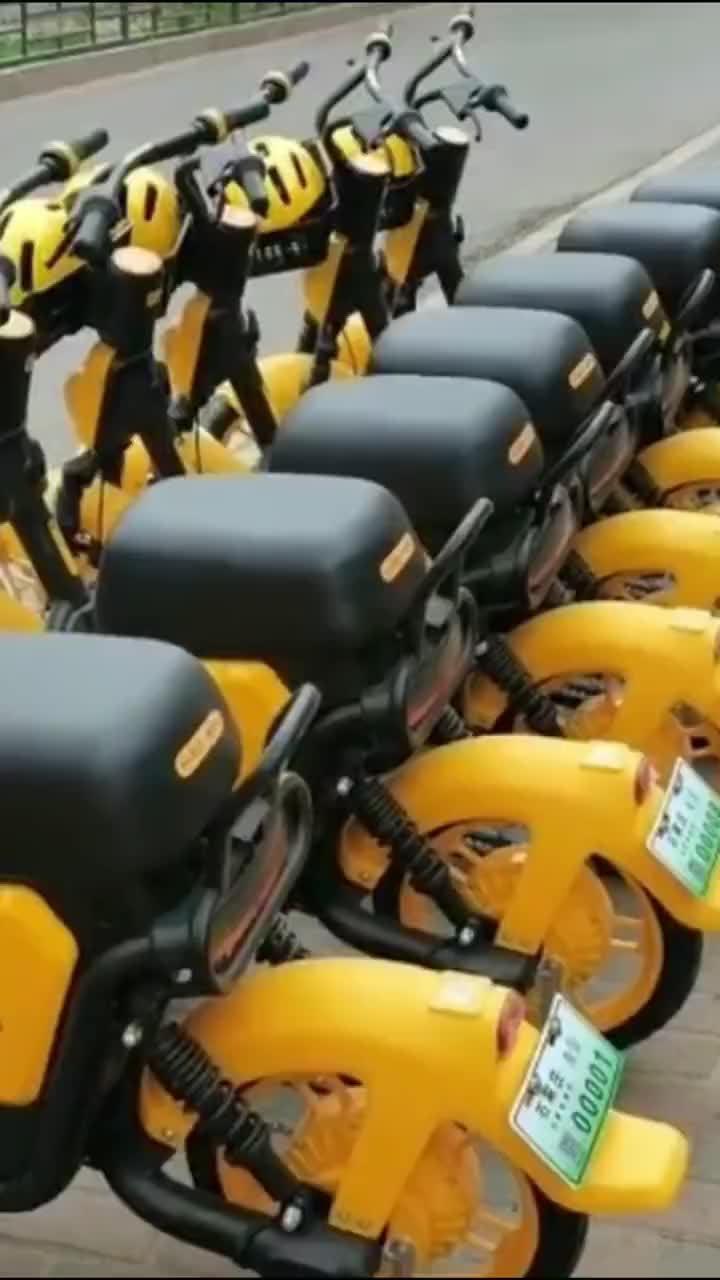 石家庄规范单车秩序违者最高罚5万