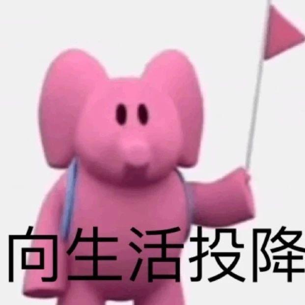 粉色小象实用表情包!用起来好有感觉!