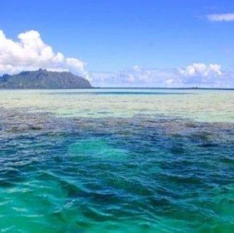 前沿 | 山东3个海洋生态保护修复项目获中央财政支持
