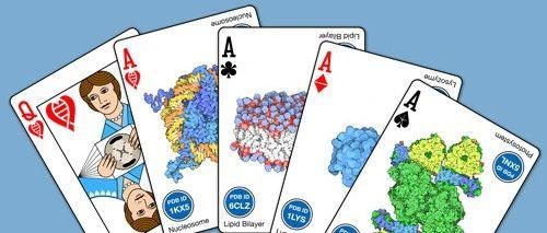 画满细胞微观结构的扑克牌,你想拥有吗?