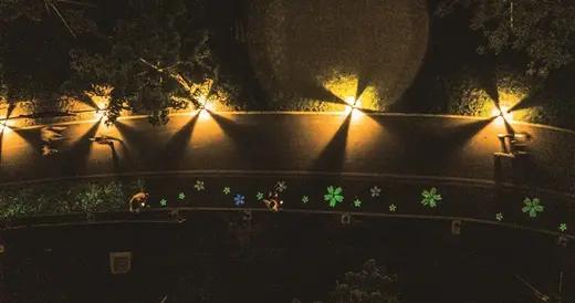 """柳州首条夜光跑道来了 已成""""网红""""打卡地"""