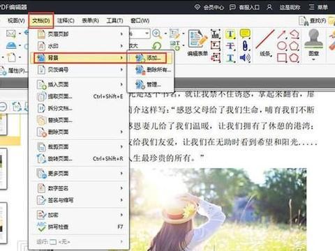 怎么在编辑PDF文档时给文档添加不同的背景